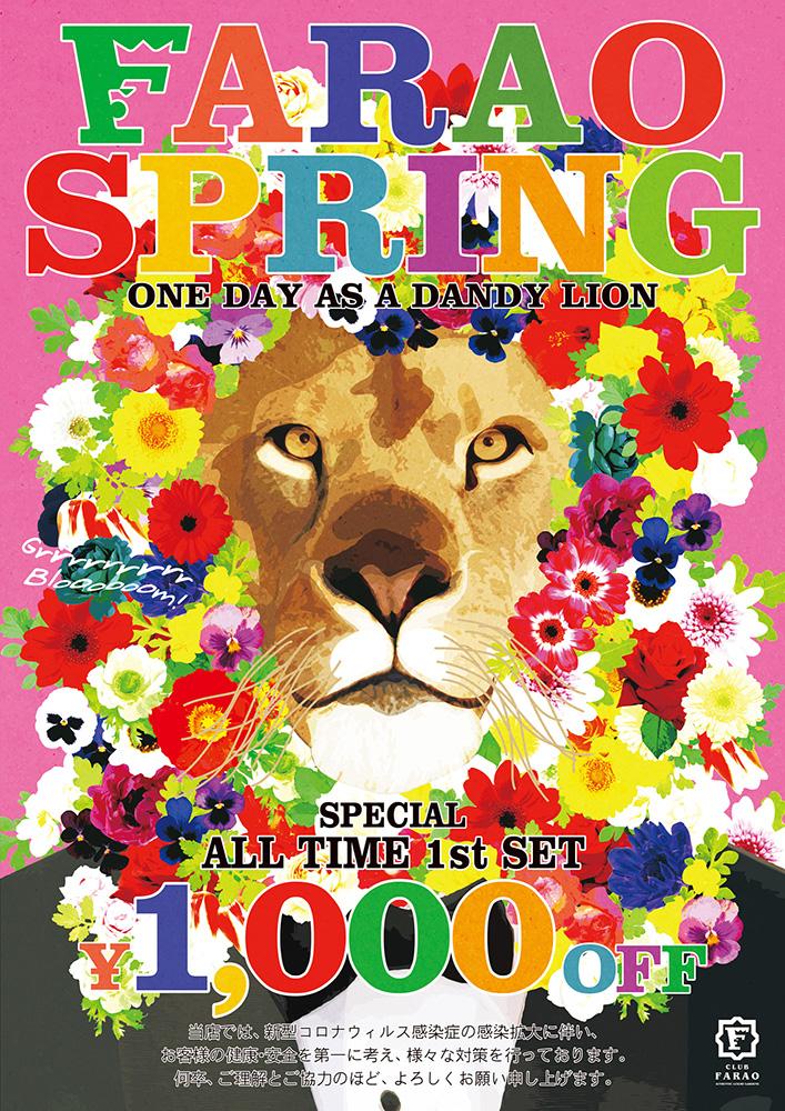 春のキャンペーン FARAO SPRING 開催中!